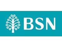 bsnbank_logo